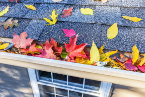 Fall Home Maintenance Checklist for your Seattle, WA home
